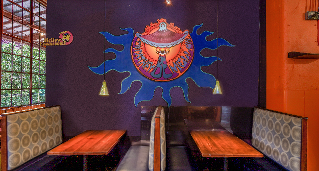 Mellow Mushroom Durham main dining booths mural