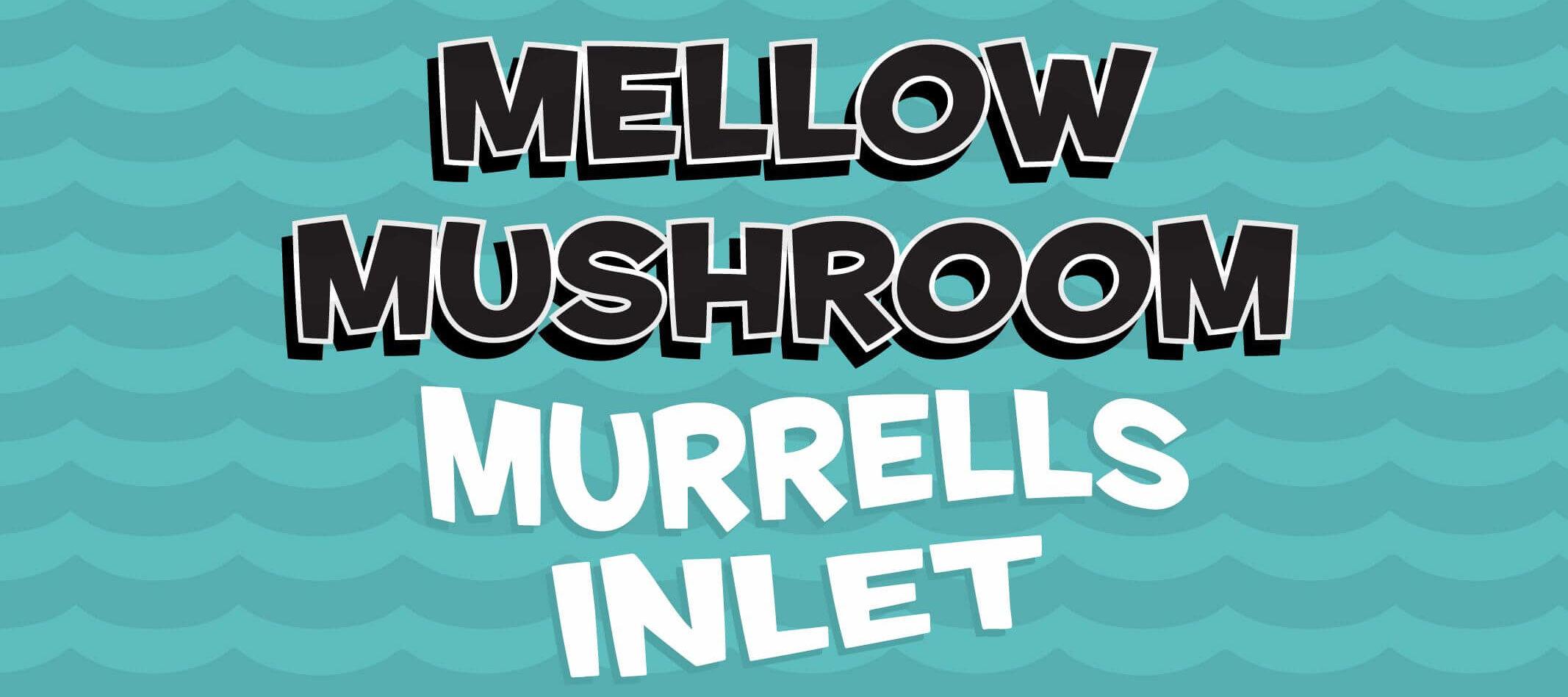 store information Mellow Mushroom Murrells Inlet local design logo