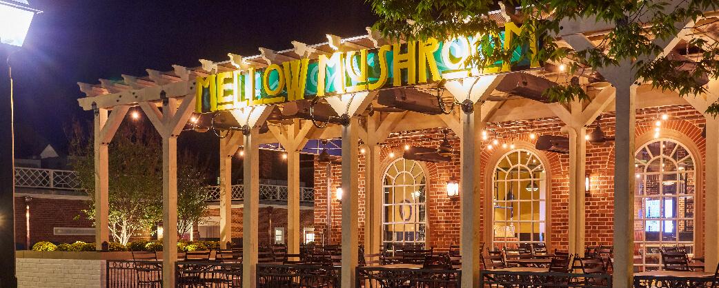 store info Mellow Mushroom Williamsburg patio night signage lights
